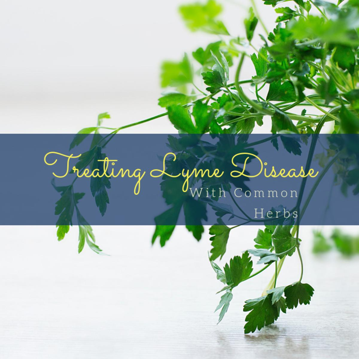 Common Herbs Used to Treat Lyme Disease | RemedyGrove