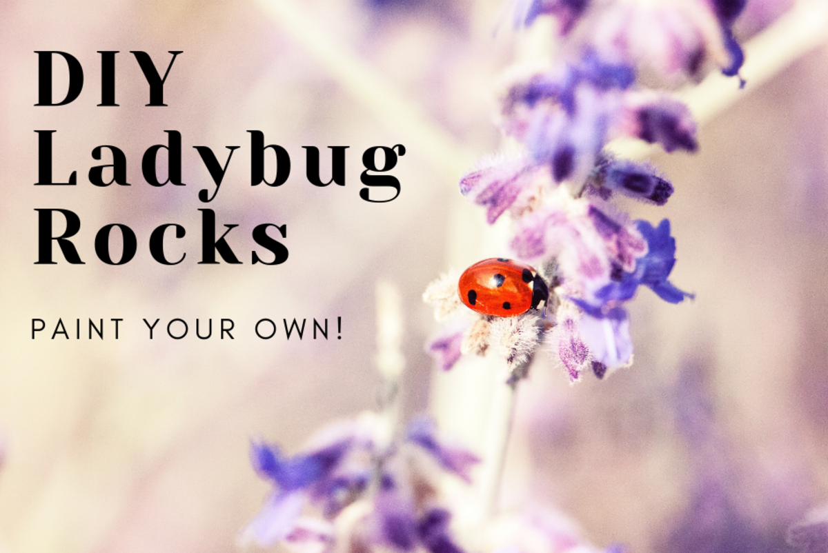 How to Paint Ladybug Rocks