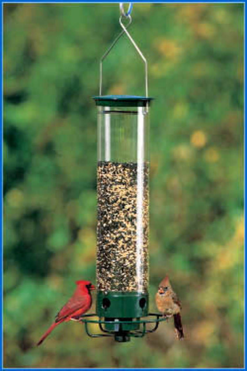 Droll Yankee Flipper - Active Squirrel Proof Bird Feeder