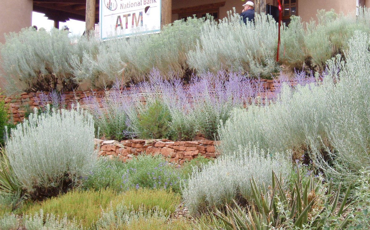 American Southwest style - brick walls mimicking arroyo cliffs, with desert (or Mediterranean) wildflowers. Taken in Santa Fe, New Mexico, 2012.