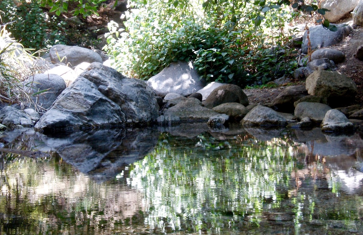 Build a little pond surrounded by rocks and trees. Fill it with koi or other fish (or frogs) to kill mosquito larvae. The trees can house mosquito-eating birds too.