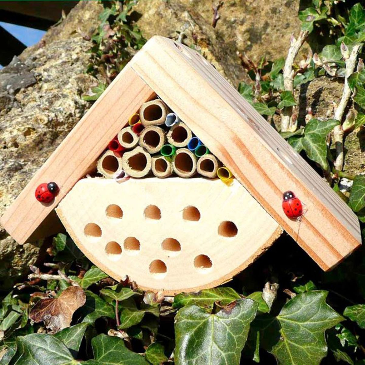 Encourage your kids to create a cute and functional habitat for ladybugs, bees, and other beneficial insects: