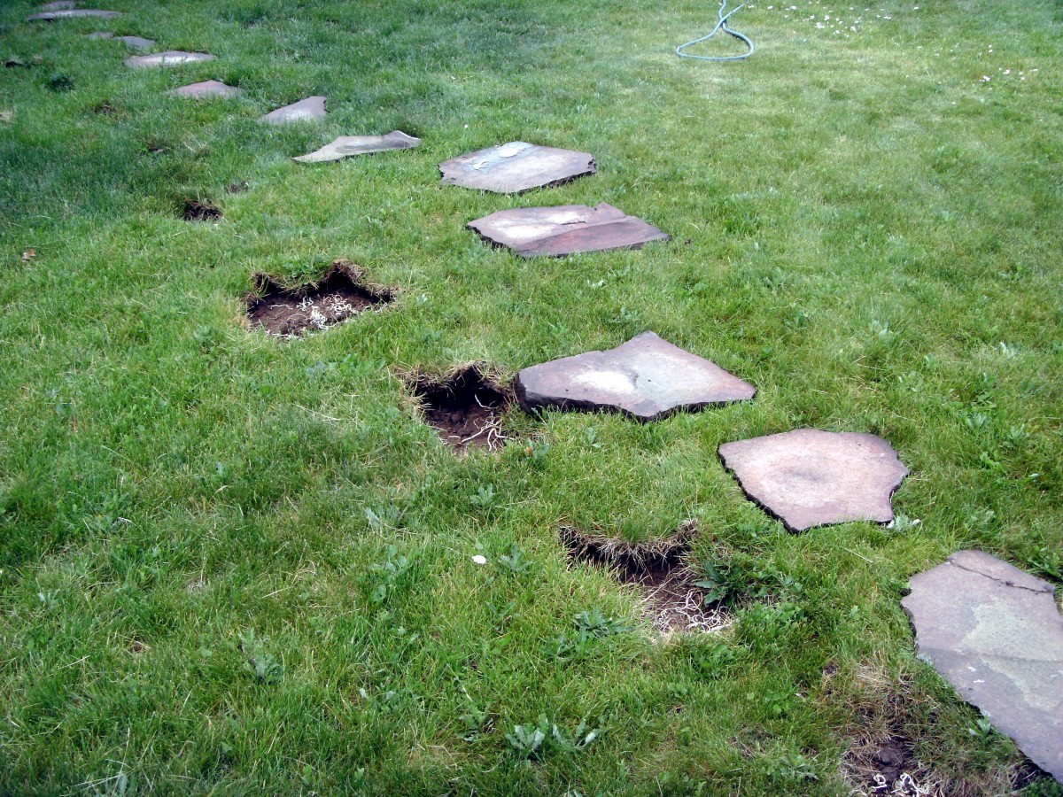 Removal of the old flagstone pavers from the yard.  Holes were re-filled with sod removed from the new patio.