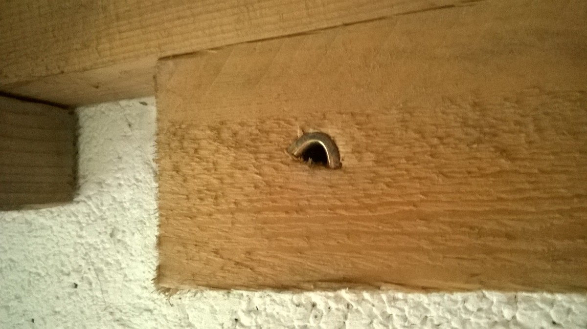 Express anchors can be used for attaching timbers to walls