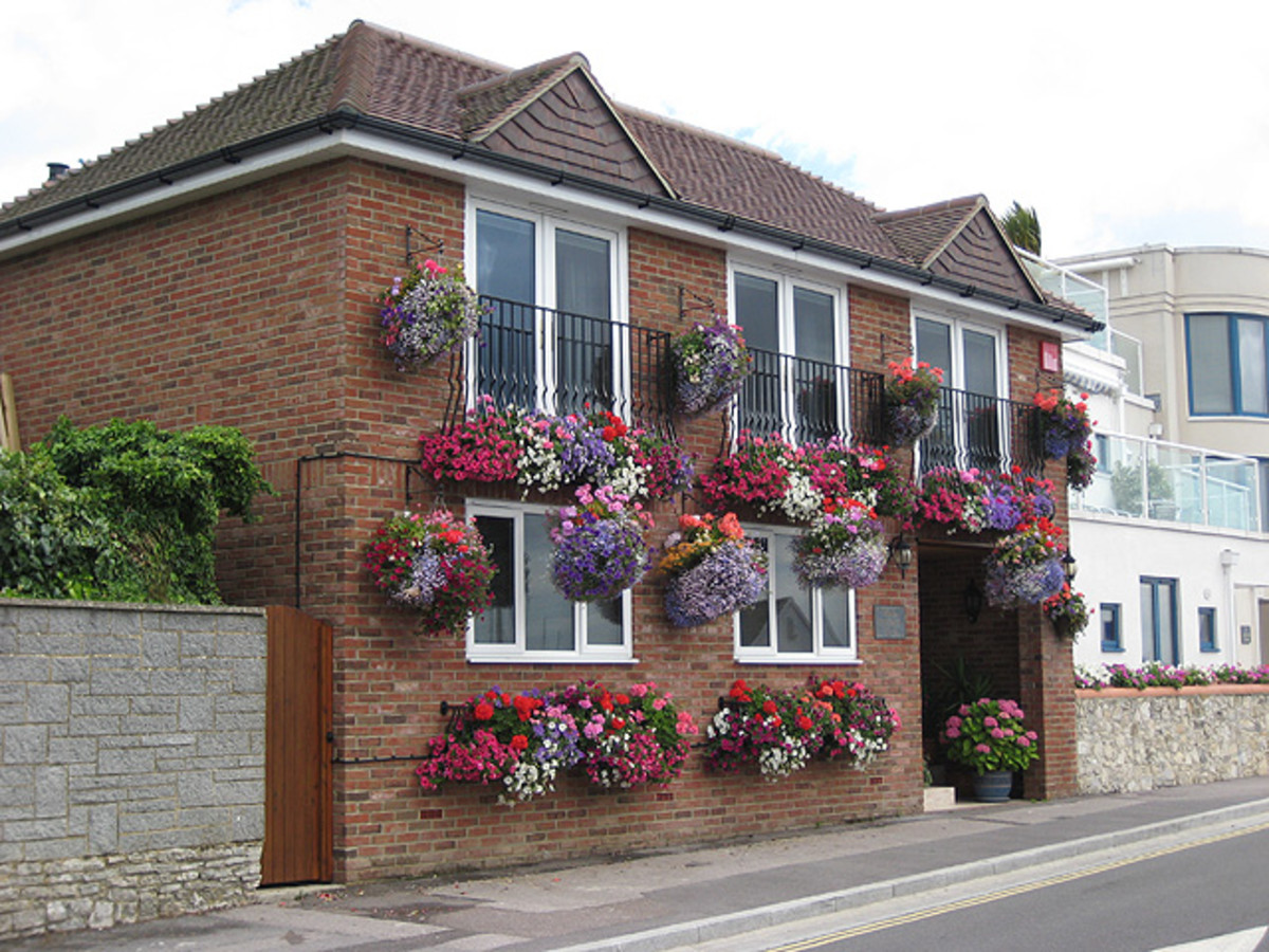 Hanging baskets help you avoid stooping and bending.