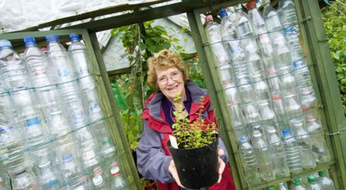 This photo shows the plastic bottle greenhouse built by 68-year old Linda Woollard as part of a university project. She used a framework of wire to hold the plastic bottles in place.
