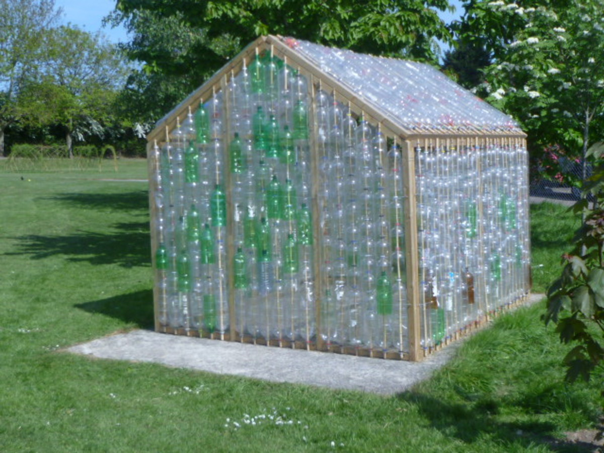 A greenhouse made from recycled plastic soda bottles.
