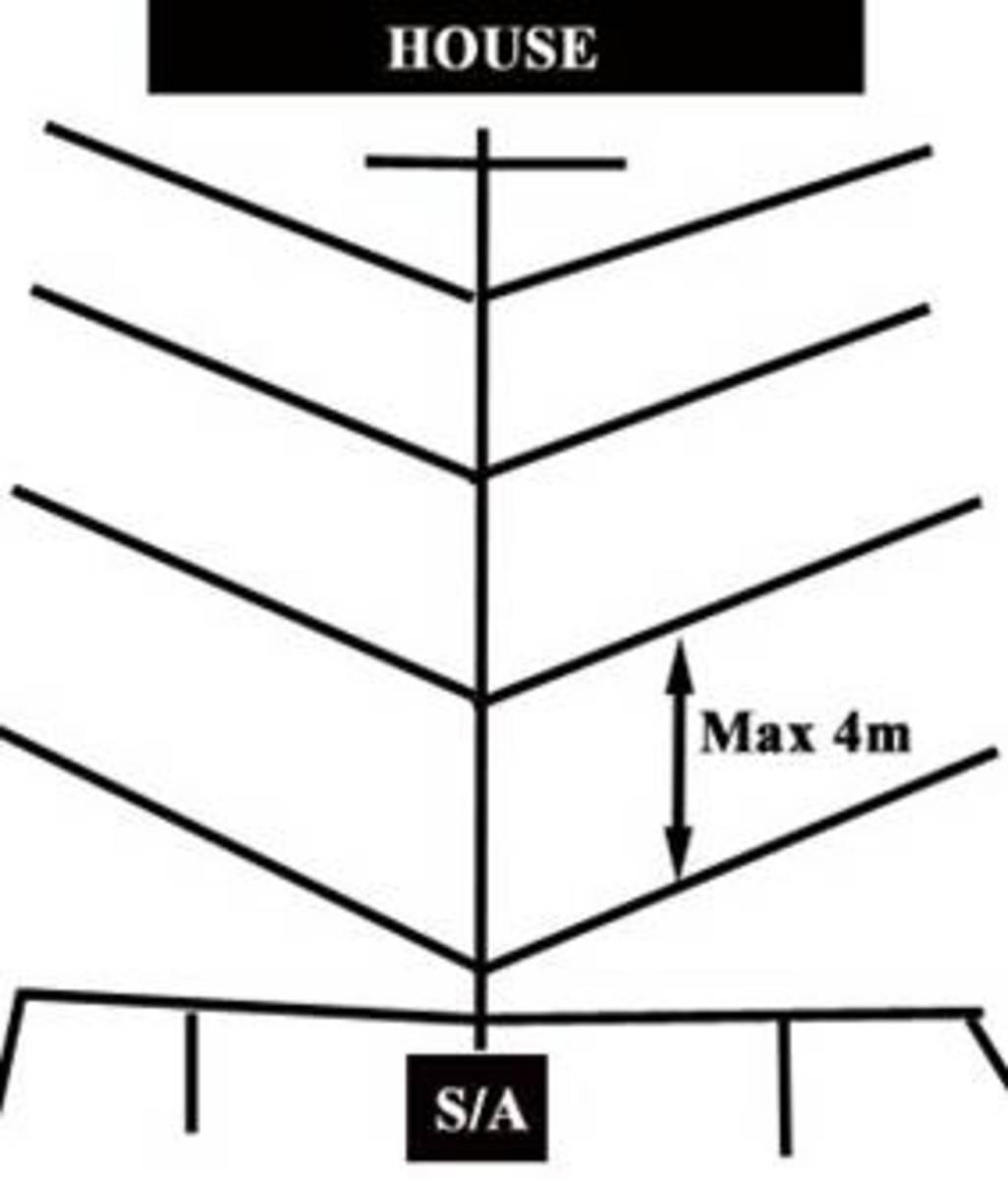 herring bone layout of drainage pipes