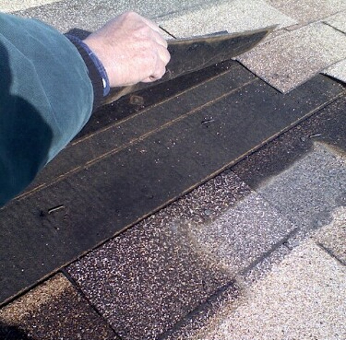 The upper shingle is pried high, showing the roofing paper under it.  The broken shingle has been completely removed.  Note the staples that need removed.