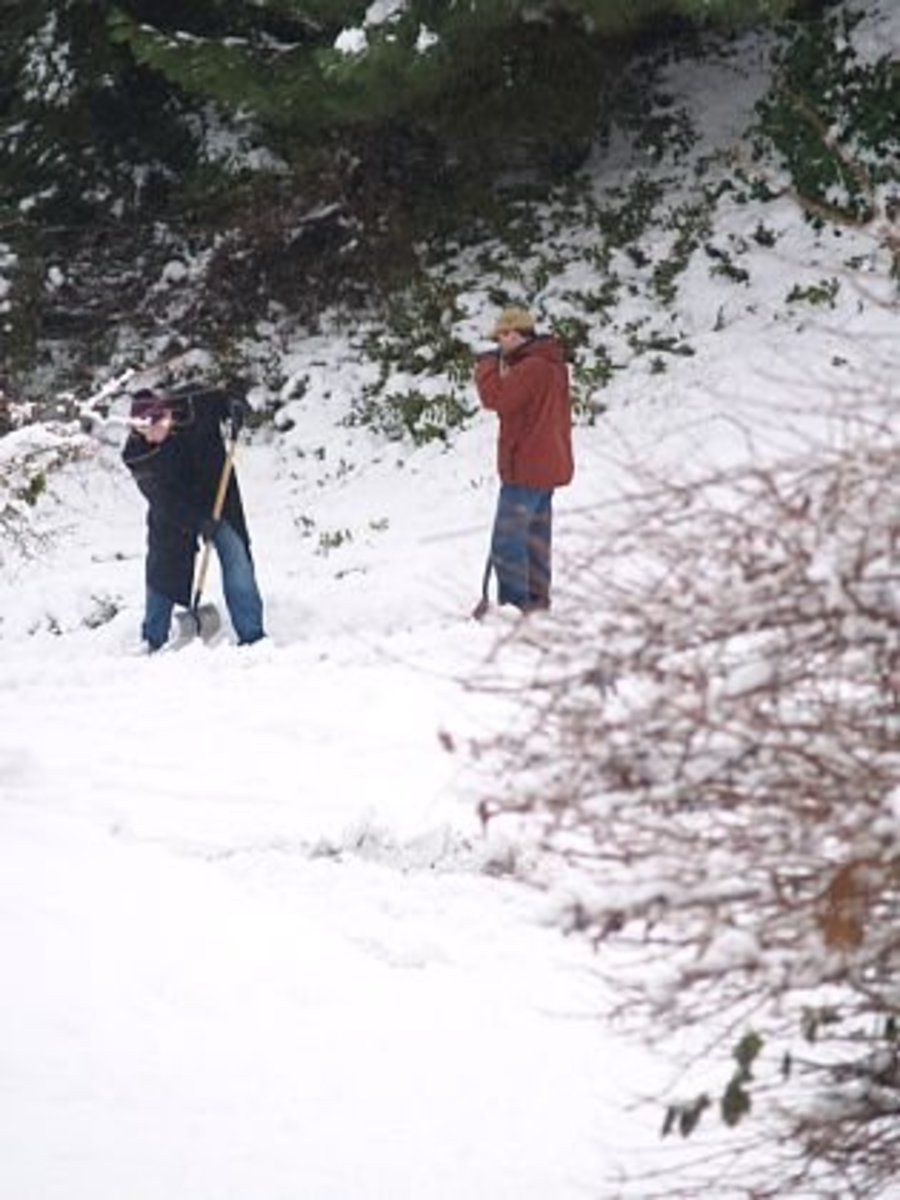 My husband and brother-in-law digging out after a snowstorm