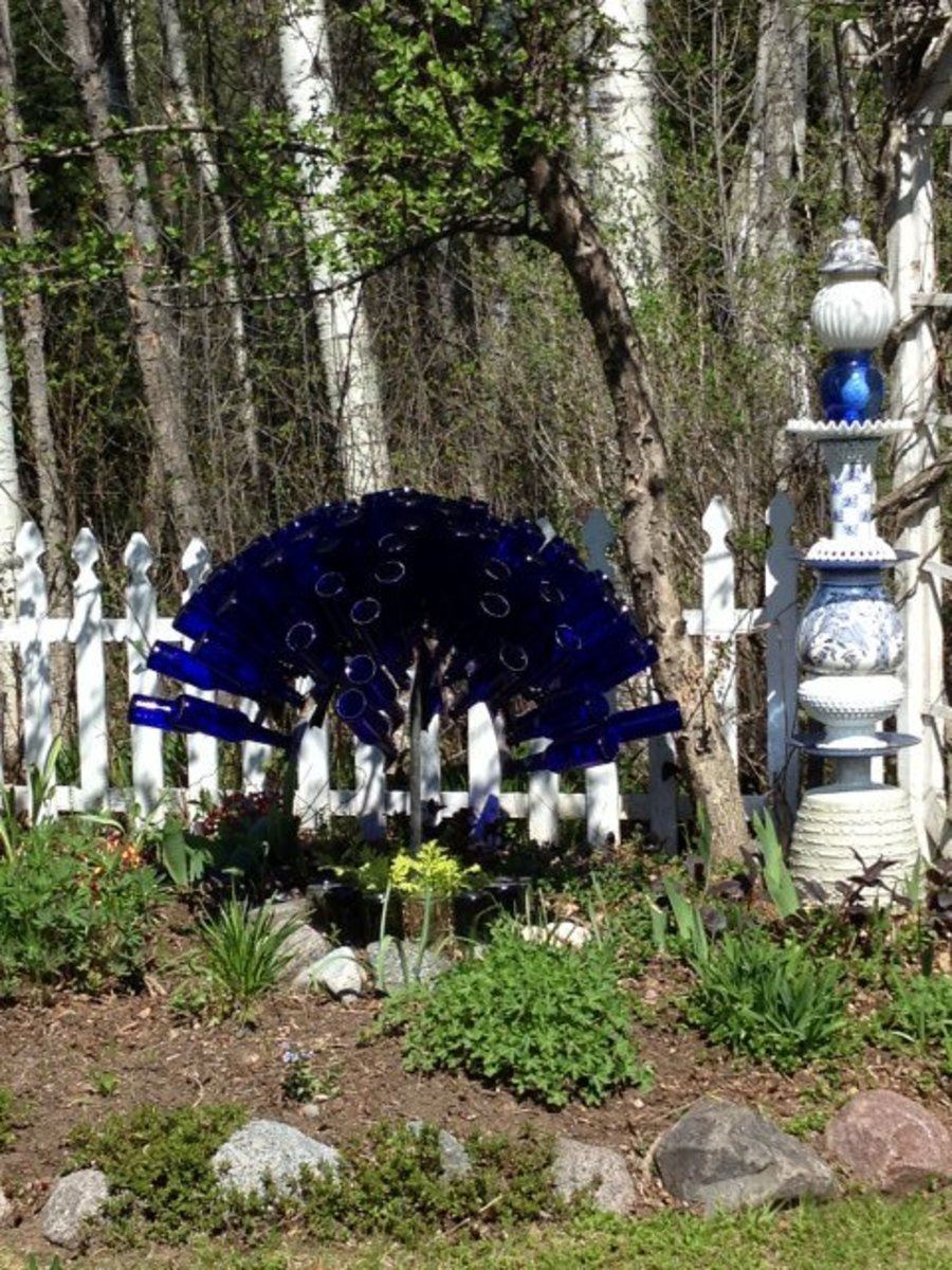 Blue Bottle Fan