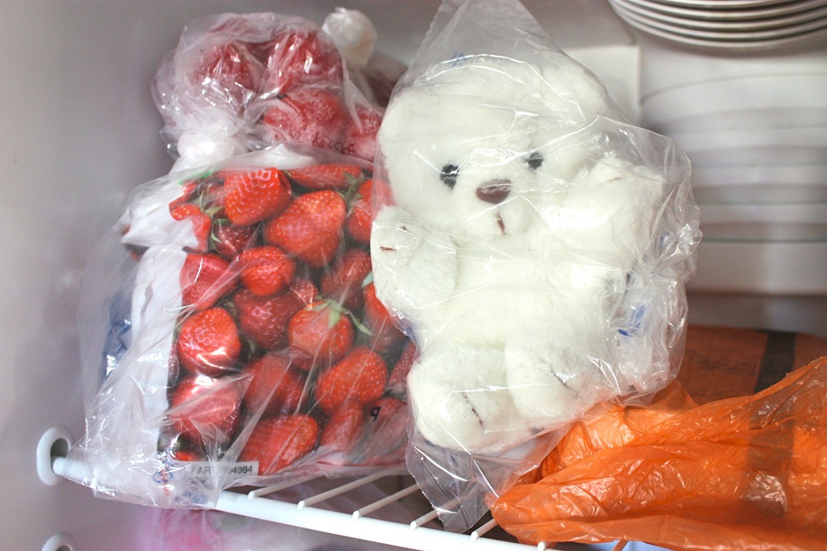 Anything that can fit inside the freezer can be thrown into plastic bags and frozen for 24 hours to get rid of dust mites.