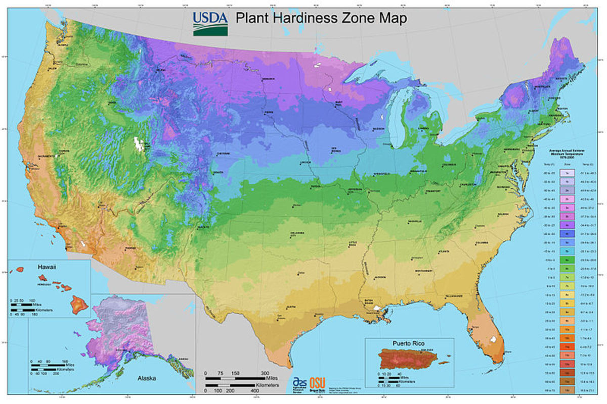 U.S. Plant Hardiness Zones Map