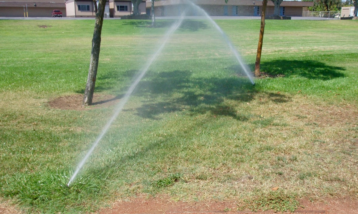 How to Detect a Water Leak in an Irrigation System | Dengarden