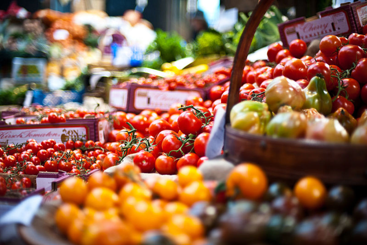 Healthy tomatoes unaffected by bacterial speck.