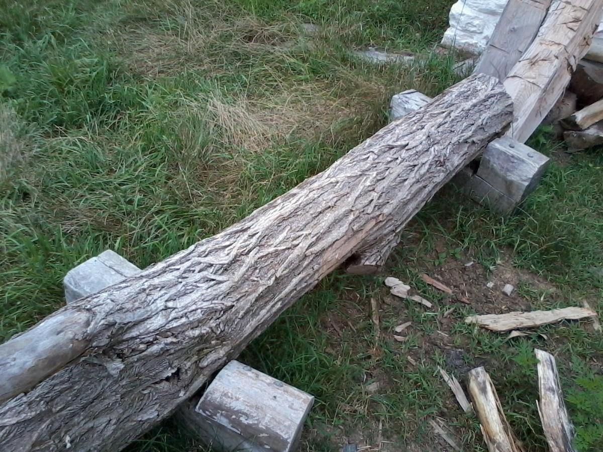 A black locust log.
