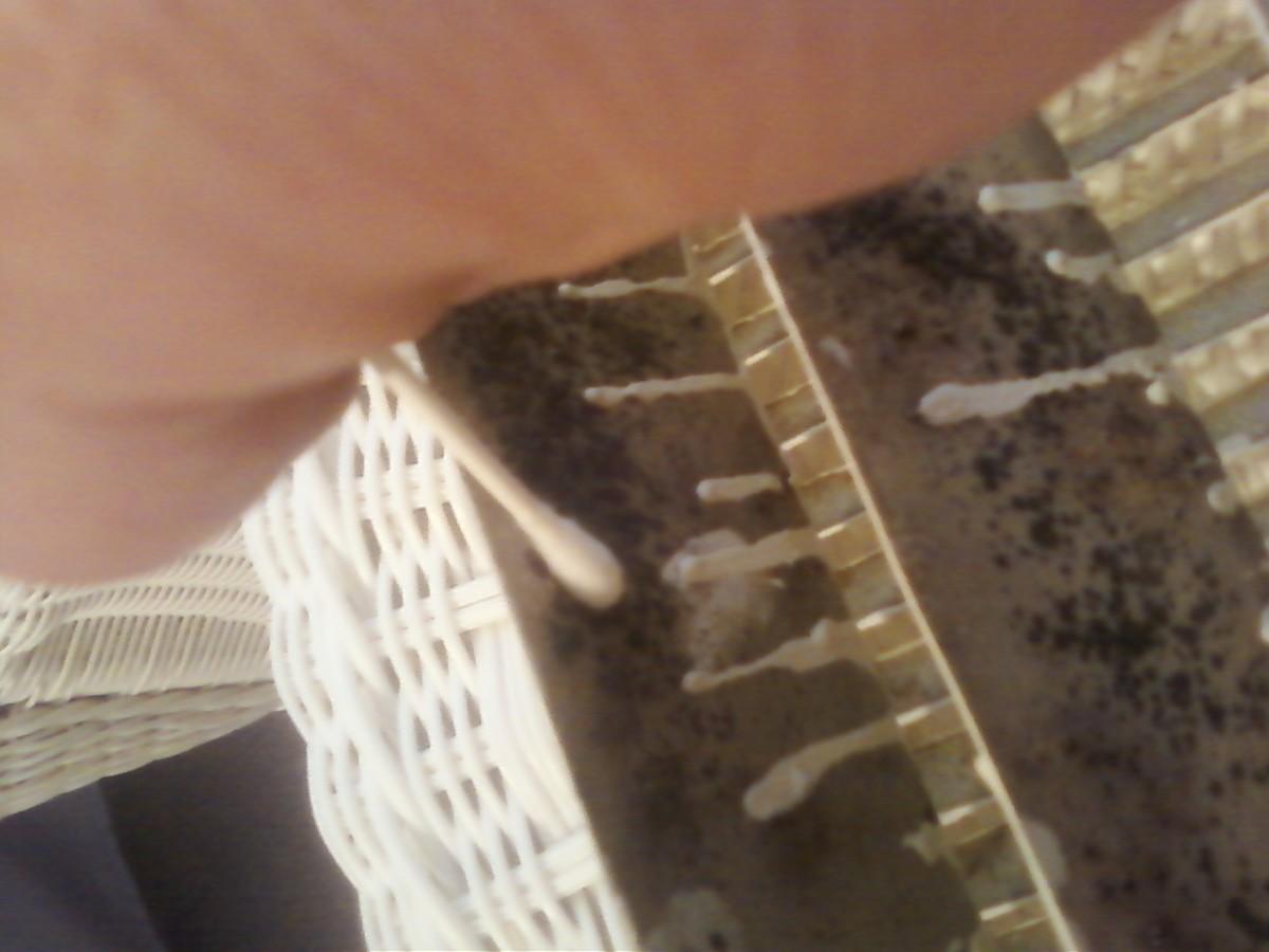 Taking swab sample of suspected mold