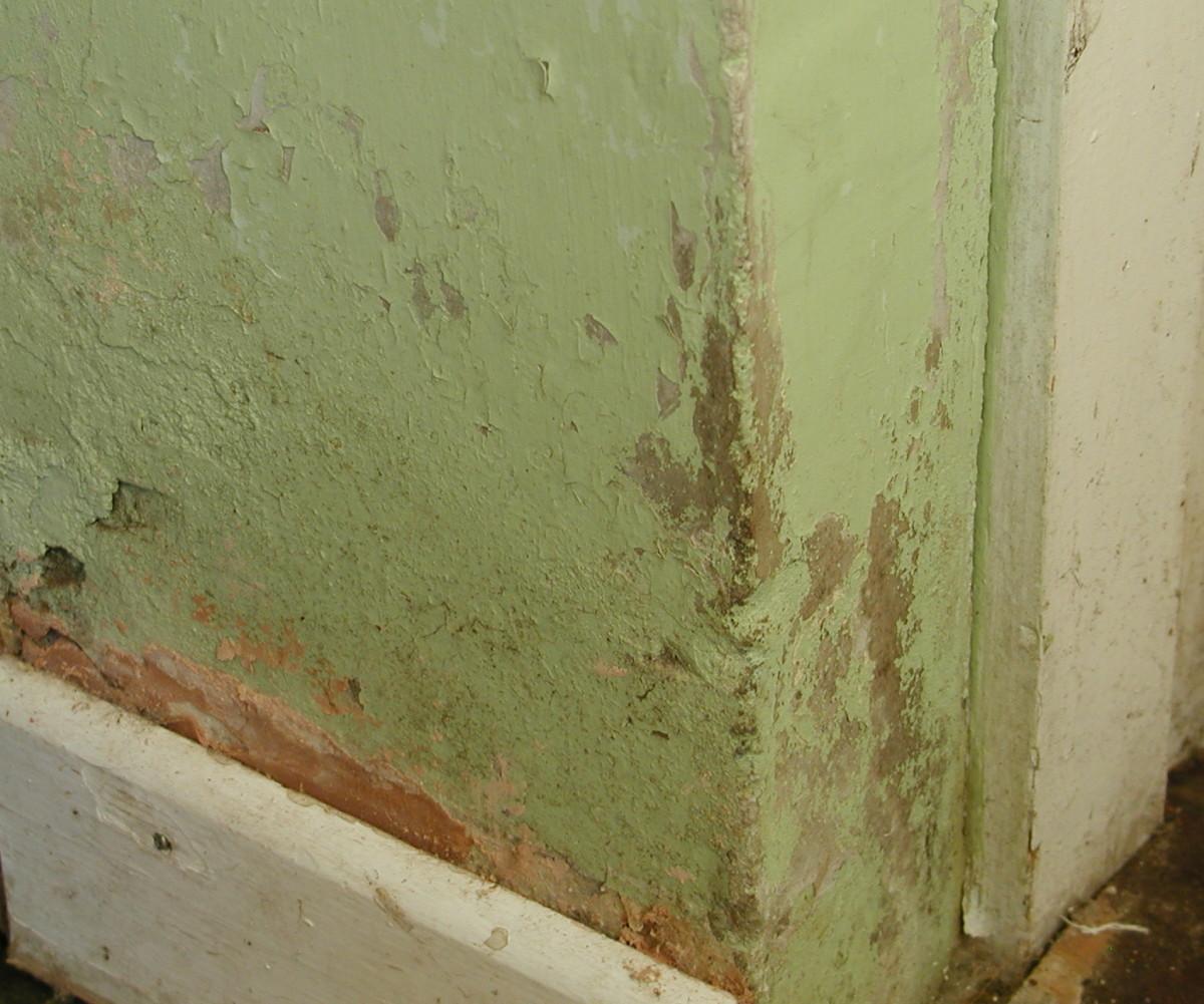 Rising damp causing damage to plaster