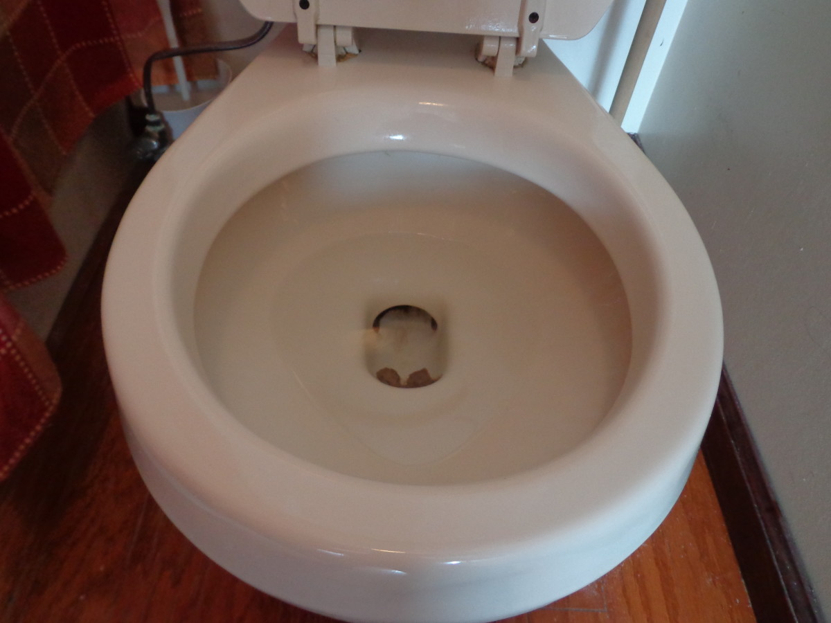 After an hour of the Borax and lemon juice soaking in the toilet bowl,  flush the toilet NOTE: this toilet has enamel that has worn off so that is not still dirt or stains in the toilet bowl