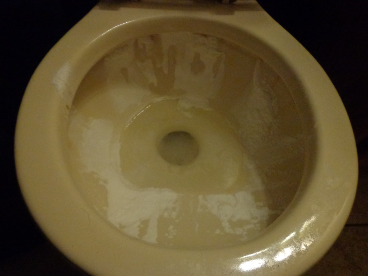 sprinkle baking soda ll around the top part of the toilet bowl