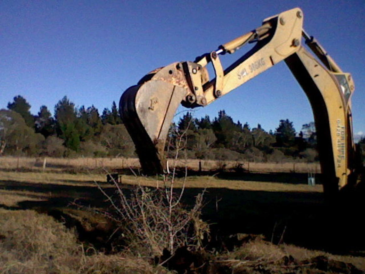 If your land is big enough, consider building a dam. As soon as we bought our property, we hired the machinery to dig a dam. Then my husband built a shed alongside it and diverted rainfall from the roof into the dam to help fill it.