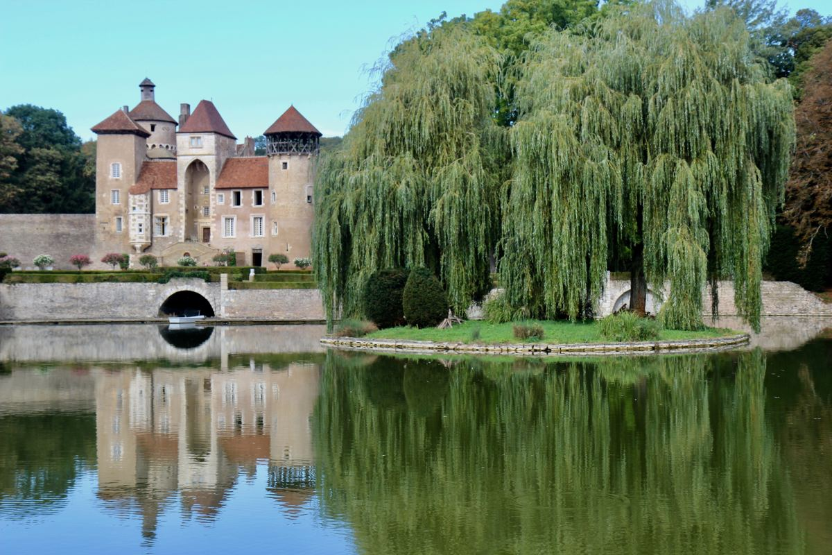 A weeping willow on a lake by a castle.