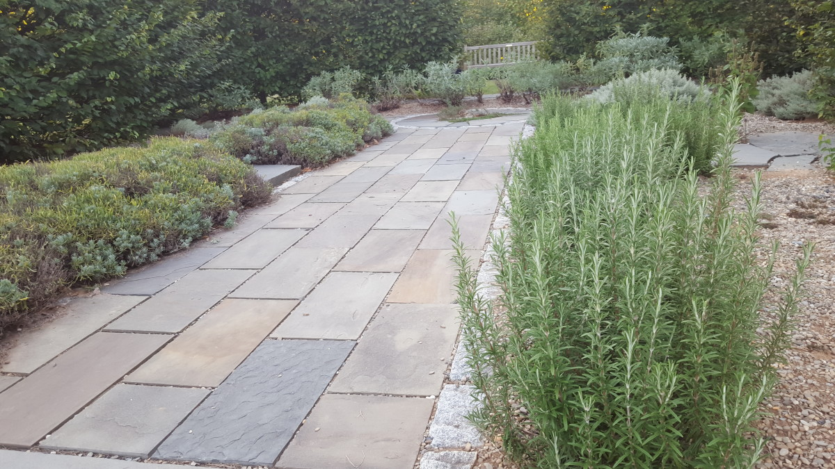 Gravel is used as a mulch in the beds of this xeriscape