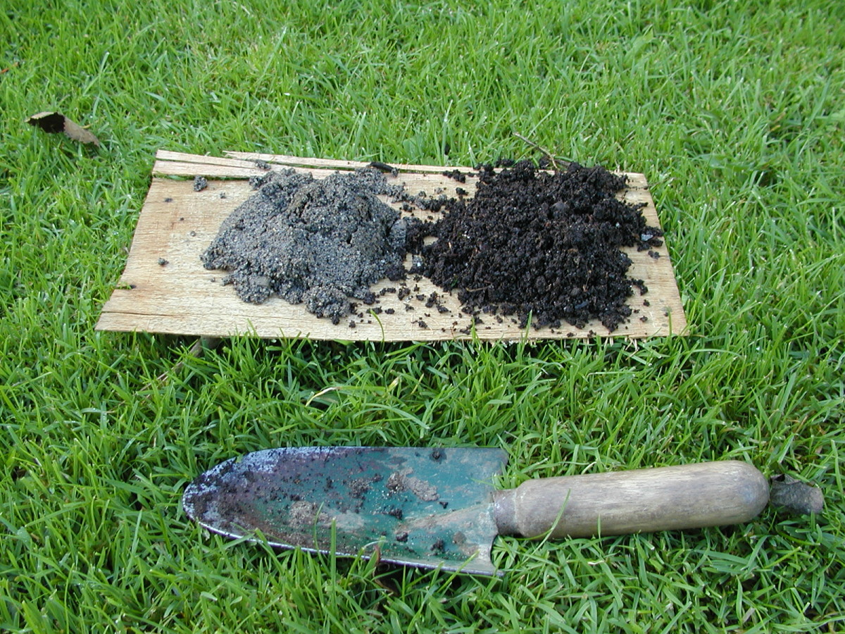 Mix up equal quantities of compost and sand