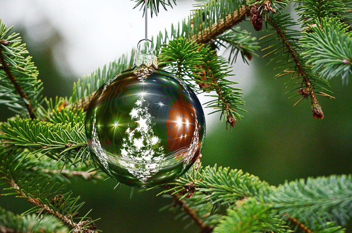 A Christmas tree is an essential part of many people's celebration.