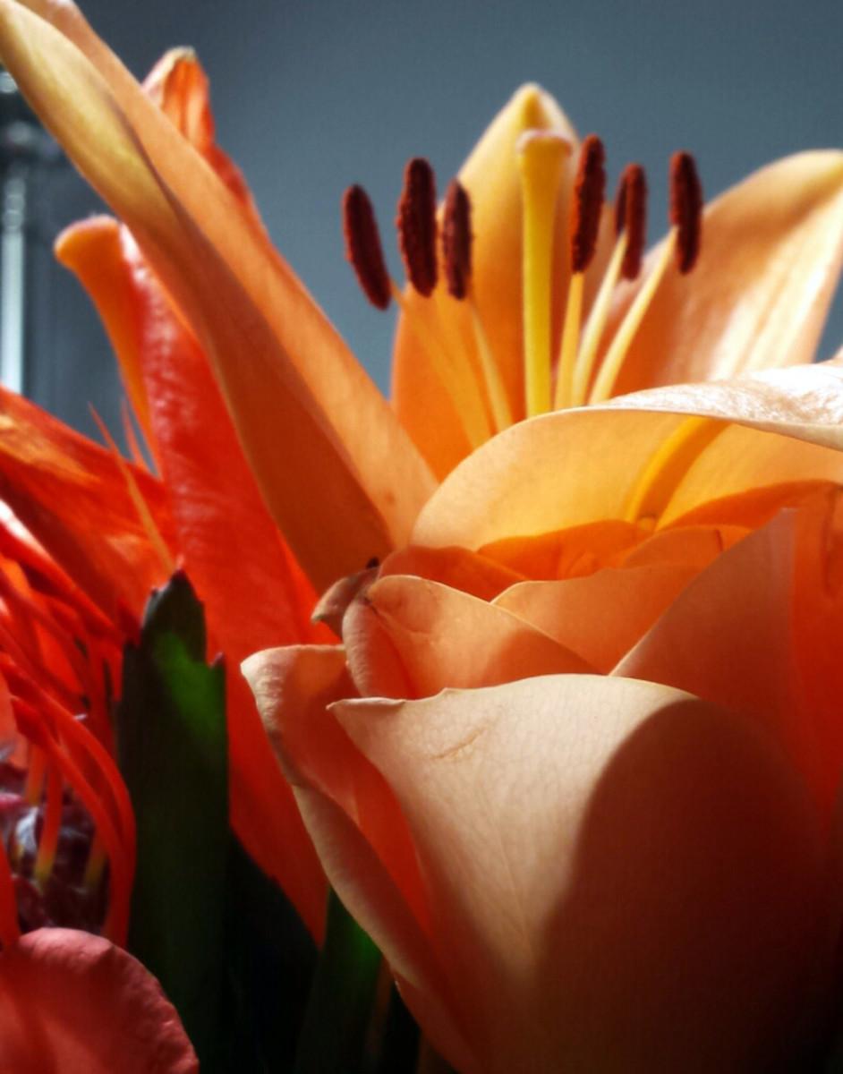 Incredible Edible Flowers
