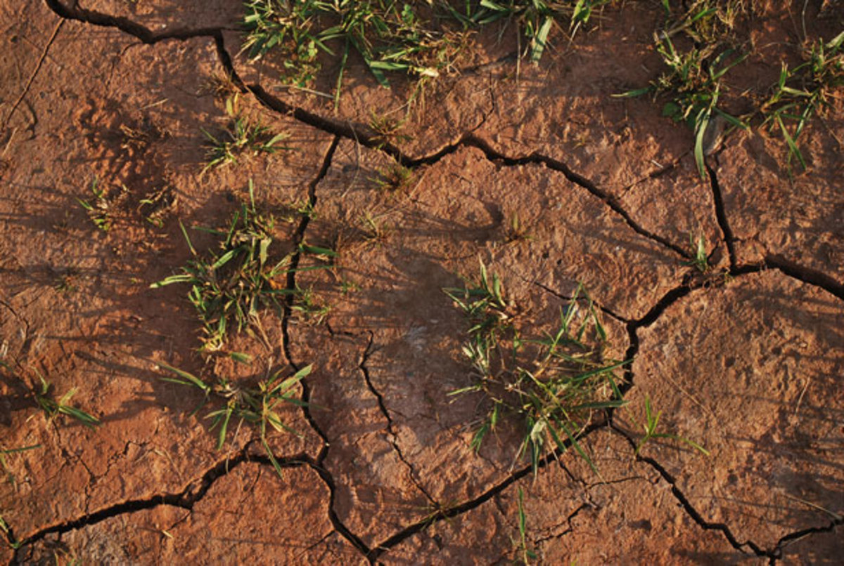 Dry, cracked soil is but one problem in a drought.