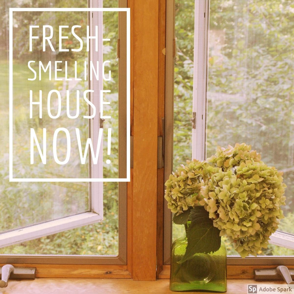 12 ways to make your home smell fabulous dengarden for What makes house smell good