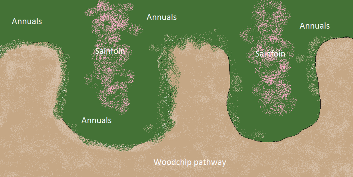 Keyhole gardens maximize accessible garden space.  Planting sainfoin, or other nitrogen fixing perennials in  the middle of each peninsula ensures continued fertility.  All plants are planted in woodchips with compost.  The path has no compost.