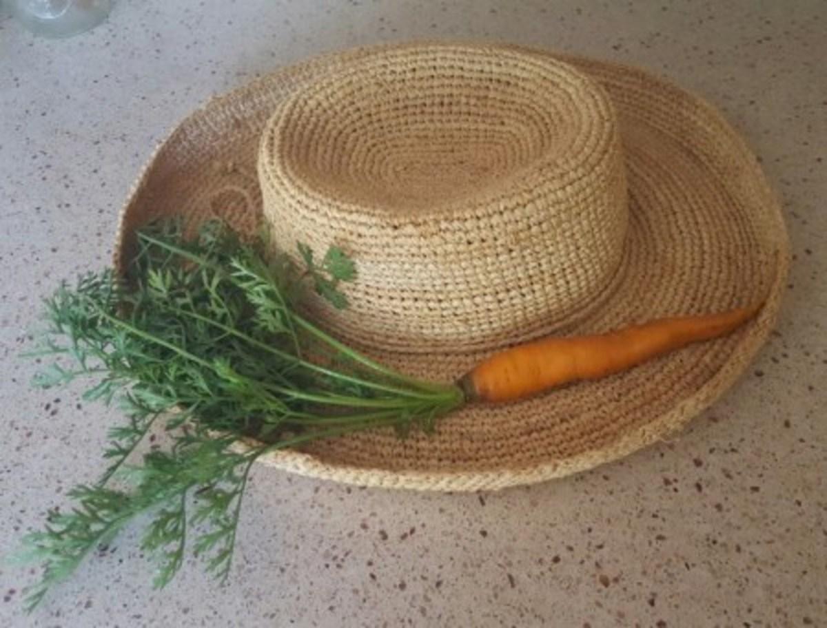 Nantes Supreme carrot grown in my garden