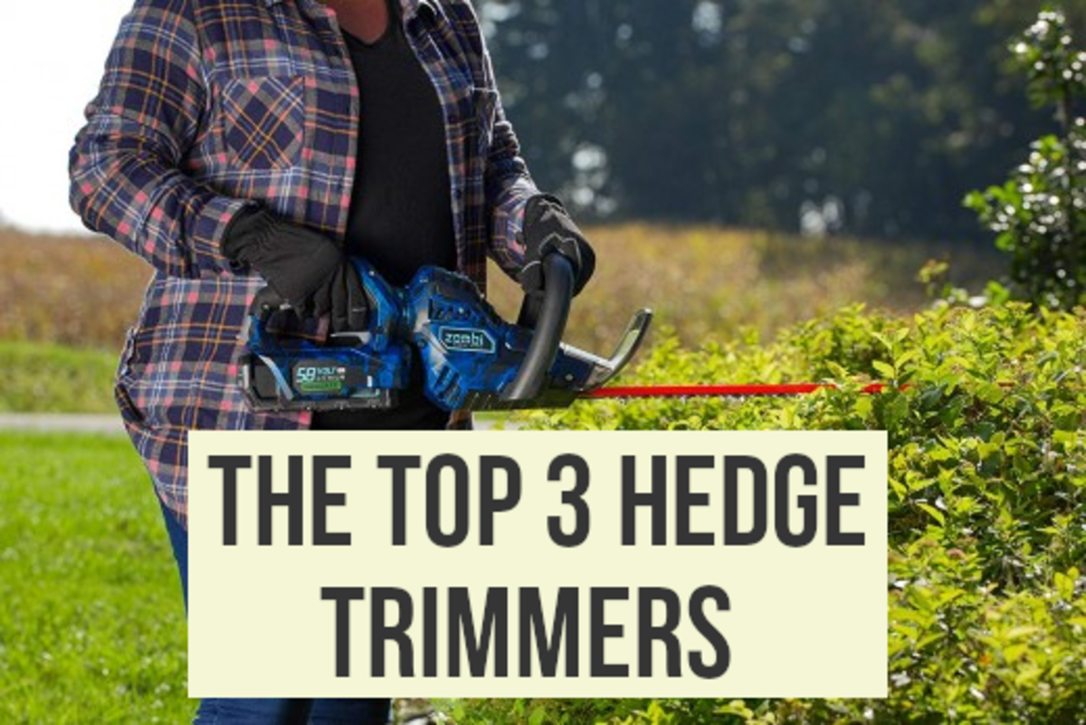 Best Hedge Trimmers: Corded, Cordless, and Gas