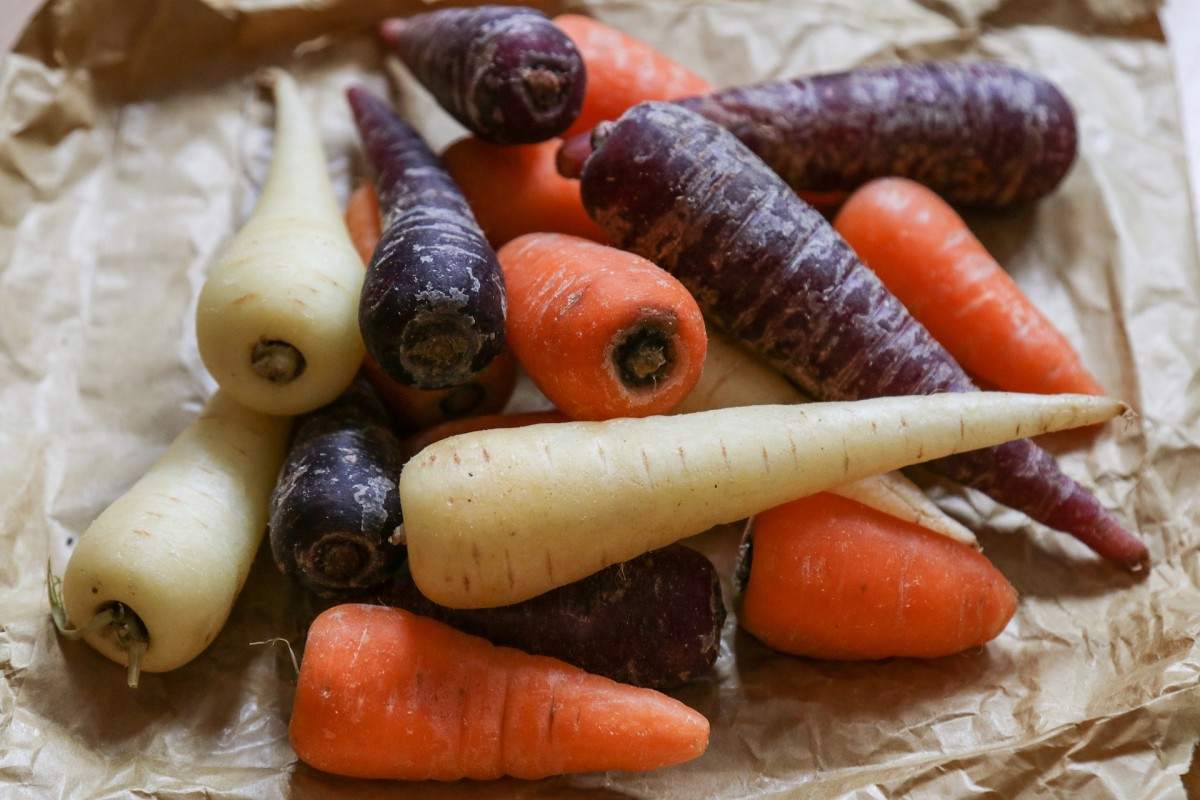 how-to-prepare-your-vegetable-plot-or-allotment-for-next-spring