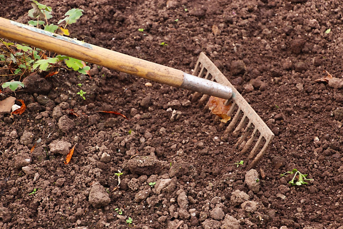 How to Check Your Soil Without Purchasing a Soil Testing Kit