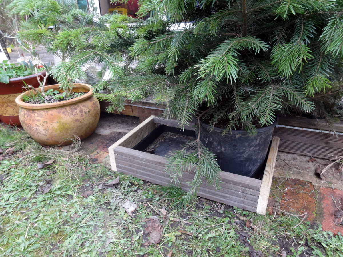 Boxed frame placed over Christmas tree water tray for protection.