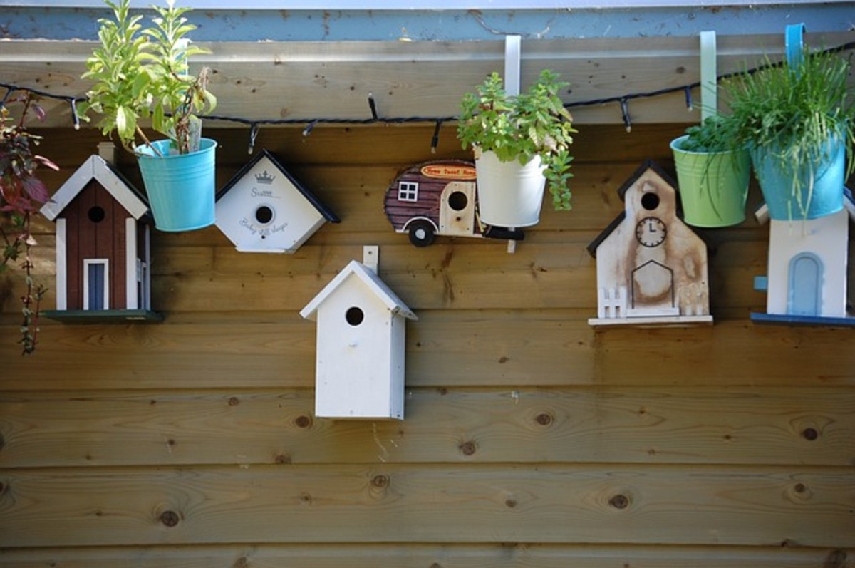 How to Build a Birdhouse for Security Cameras