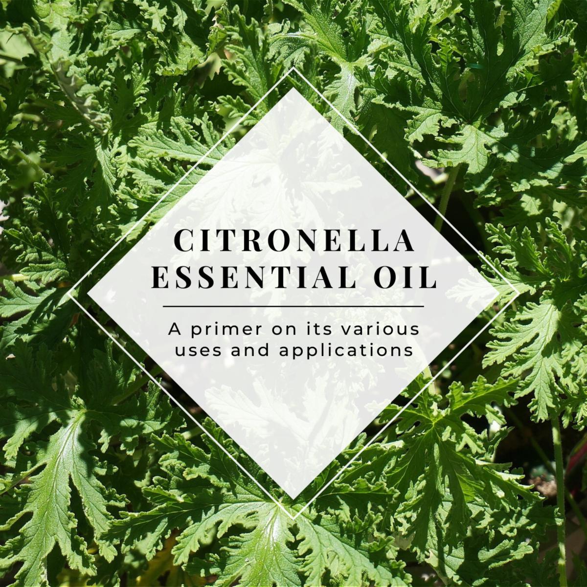 How to Use Citronella Essential Oil