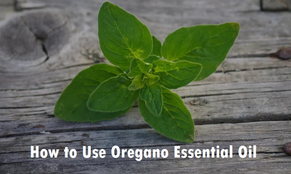 How to Use Oregano Essential Oil