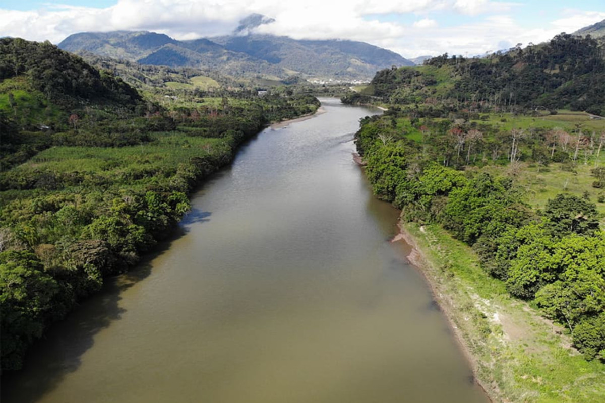 The Amazon River: Lifeblood of the Rainforest