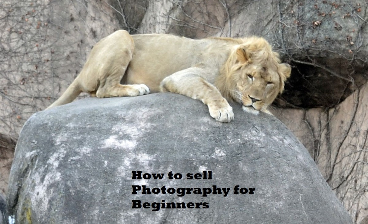 How to sell photography for beginners