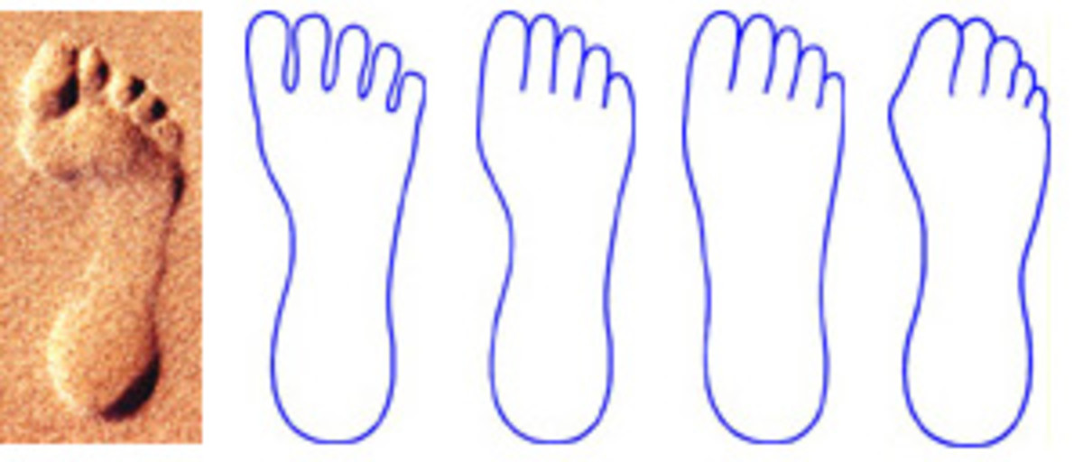 A foot print or drawing of a foot is indicative of its health.