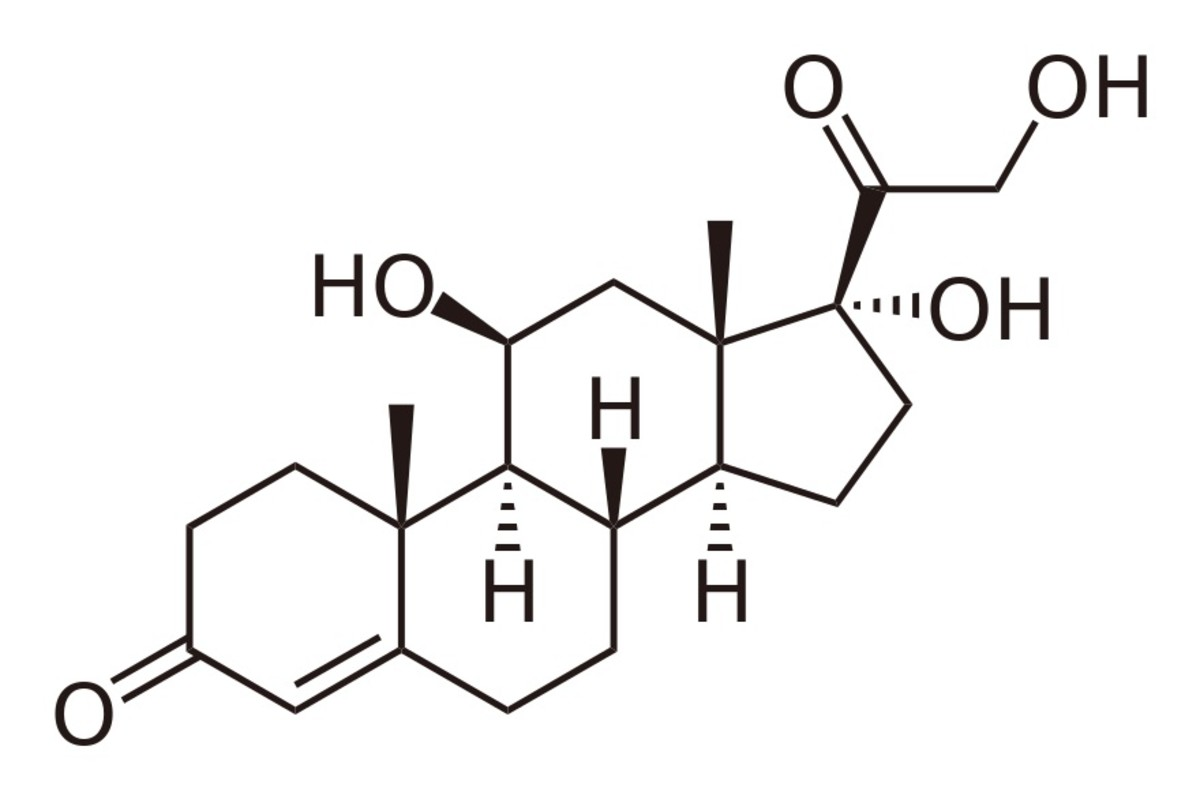 This is a molecule of cortisol, which is made by the adrenal gland. Like other steroids, it contains four fused rings in its structure.
