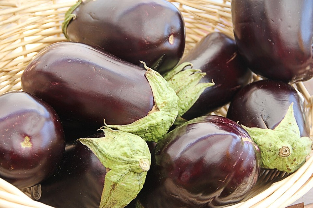 Eggplant, or aubergine, is another nightshade vegetable.