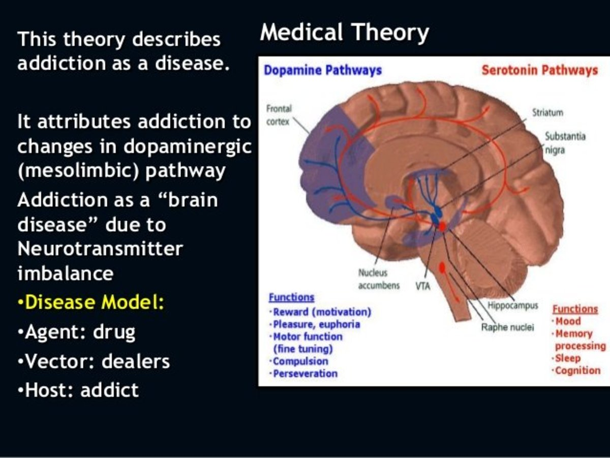 models of addiction essay Syndrome model and the integral model of addiction custom essay -what possible issues of crisis and emergency management might arise when using these models of addiction and compulsive behavior place an order of a custom essay for this assignment with us now.