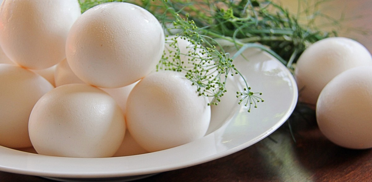 Eggs and herbs are included in the ketogenic diet.