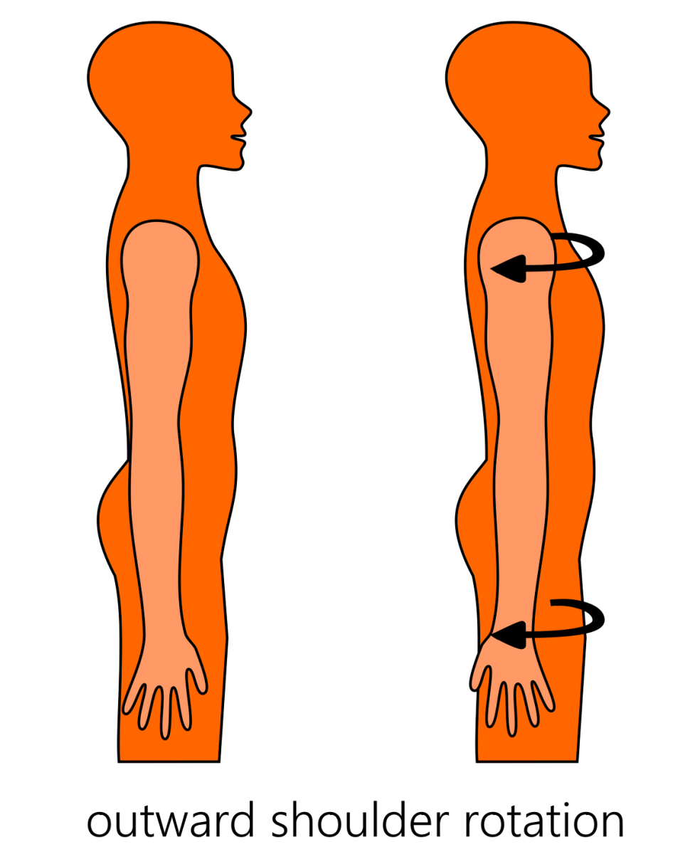 Get Off Your Chair For A Minute And Do The Following Shoulder Alignment  Move To Feel The Rhomboid Muscles Putting Your Shoulders Back Into Their  Correct ...