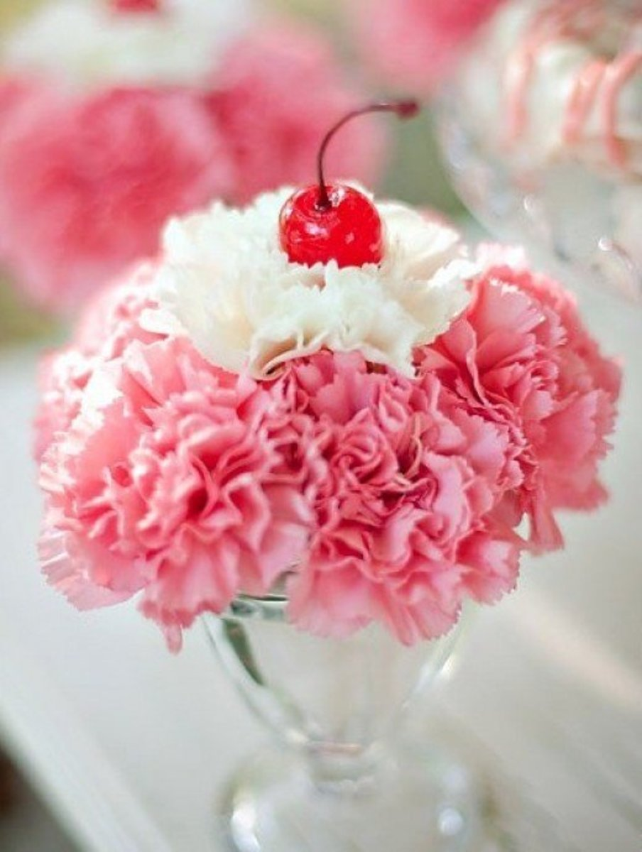Carnation sundae, with a cherry on top, of course!